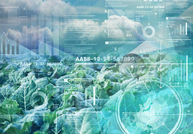 「植物工場等バリューチェーン効率化システム研究開発」がNEDOの研究開発プロジェクトに採択されました。