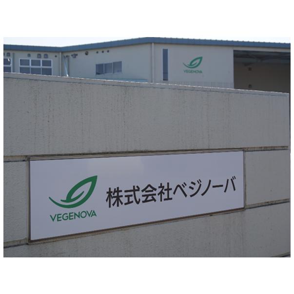 完全人工光型植物工場:ベジノーバ(埼玉県加須市)竣工のお知らせ